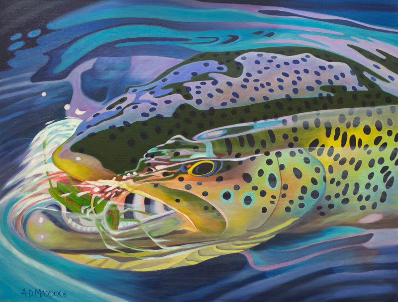 The art of fly fishing a d maddox the black gnats for Fly fishing art